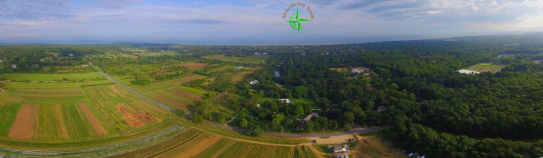 Balsam Farms , Amagansett NY