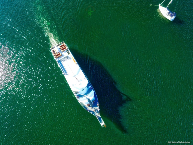 A Bird's-Eye: Viking Ferry -  New Harbor , Block Island , RI