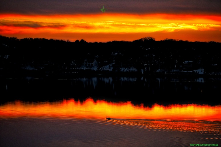 Lone Swan Sunset - Three Mile Harbor , NY